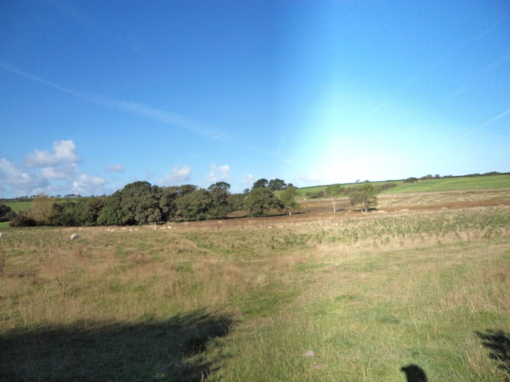 Land Commercial for sale in 25 Acres of Agricultural Land at The Patches, Llandough, Cowbridge, Vale of Glamorgan, CF71 7LR