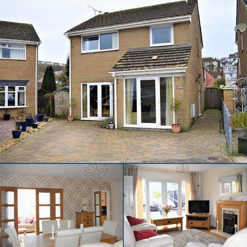 3 bedroom detached house for sale - Woodburn Drive, West Cross, Swansea