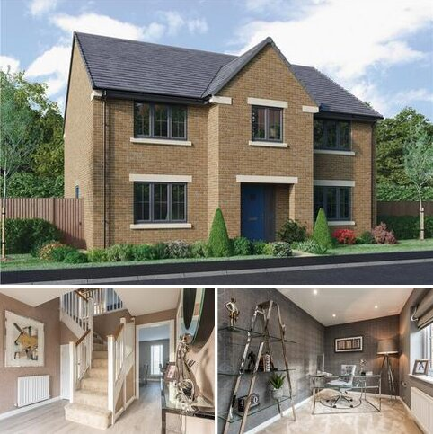 5 bedroom detached house for sale - Plot 14, The Chichester at Hurworth Hall Farm, Roundhill Road DL2
