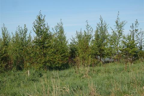 Land for sale - Copt Hill Wood Houghton Le Spring, Tyne and Wear, DH5