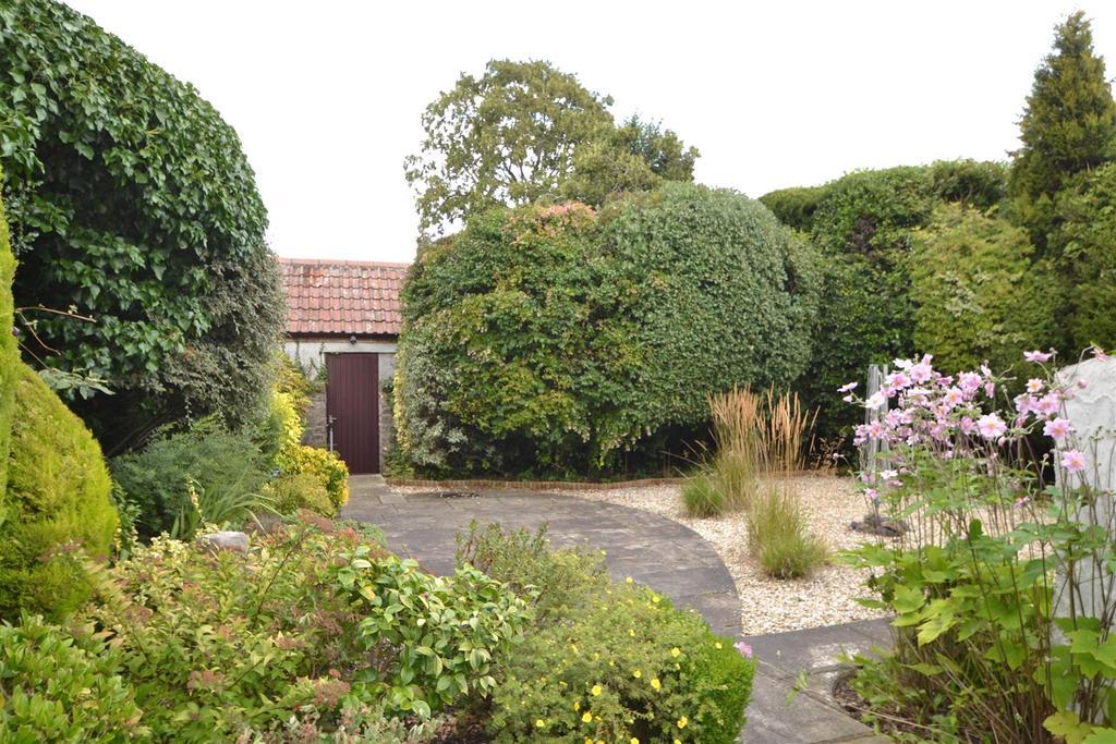 42 coombe Lane rear garden.JPG