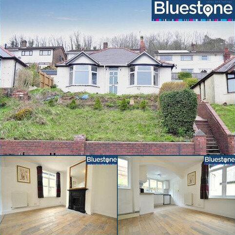 2 bedroom detached bungalow for sale - Chepstow Road, Newport