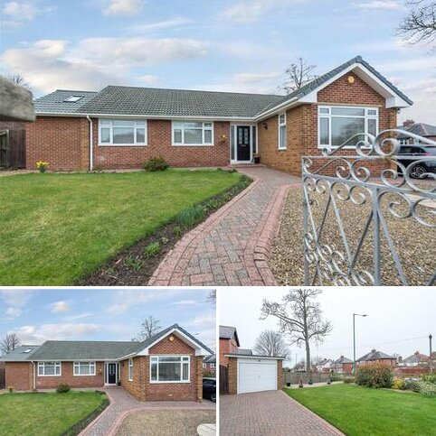 3 bedroom bungalow for sale - Hermitage Park, Chester le Street, Durham, DH3