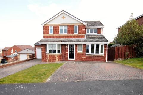 4 bedroom detached house for sale - Hill Crest, Sacriston, Durham