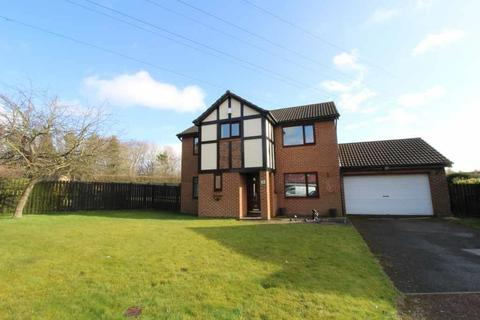 4 bedroom detached house for sale - Deacon Close, Abbey Farm, North Walbottle, Newcastle Upon Tyne