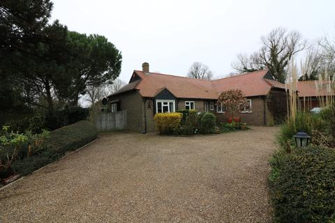 4 bedroom detached bungalow to rent - Whitefriars Meadow, Sandwich