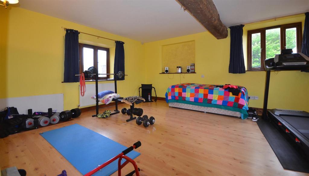 Bedroom / Gym