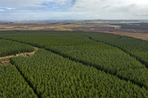 Land for sale - Chracairnie Forest, Dorrery, Caithness