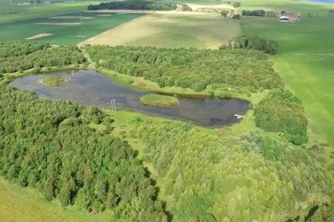 Land for sale - Tarrel Farm Lochan, Tarrel Farm, Portmahomack, IV20