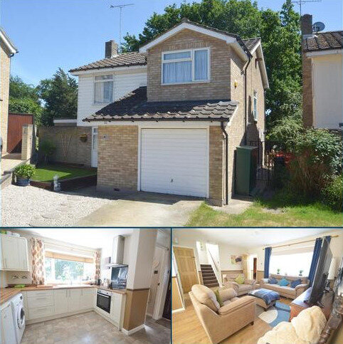 4 bedroom detached house for sale - Harvey Road, Great Totham, Maldon, CM9 8QA