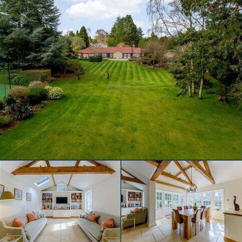 4 bedroom detached bungalow for sale - Primrose Way, Bramley, Guildford, Surrey