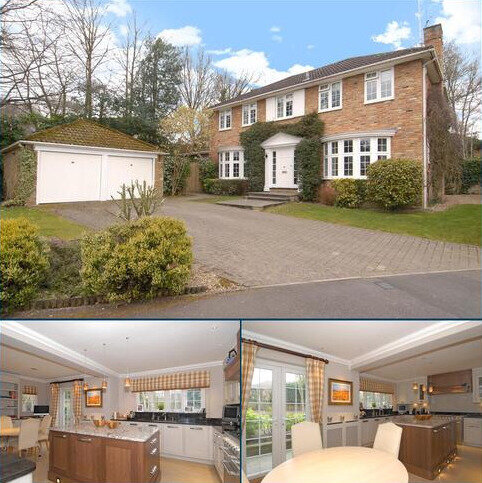 4 bedroom detached house to rent - Walton Drive, Ascot, Berkshire, SL5