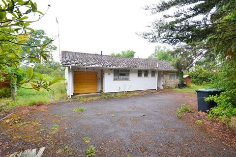3 bedroom bungalow for sale - St Leonards