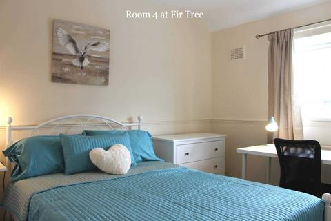 1 bedroom house share to rent - Room 4, 41 Fir Tree Road, Guildford, GU1 1JN- NO ADMIN FEES!