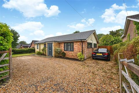 4 bedroom detached bungalow for sale - Blackberry Lane, Four Marks, Alton, Hampshire