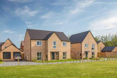 4 bedroom detached house for sale - Plot 16, Winstone at Northstowe, Wellington Road, Cambridge CB24