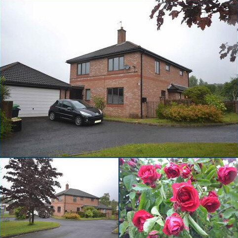 4 bedroom detached house to rent - Hollyhill Gardens East, Stanley, Co. Durham, DH9