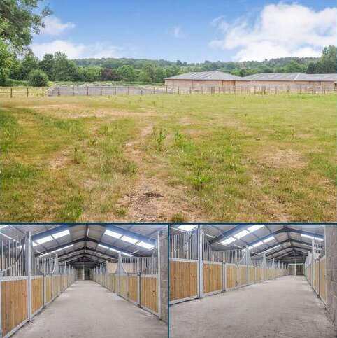 Equestrian property to rent - Farnham Road, Farnham
