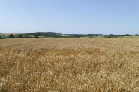 Land for sale - Chawleigh