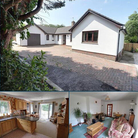 3 bedroom detached bungalow for sale - Pinch Hill, Marhamchurch