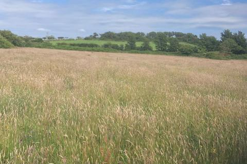 Land for sale - 2.65 acres of Pasture Land, Cotswolds Field, Ton Kenfig