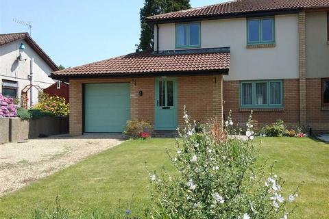 3 bedroom semi-detached house for sale - Llys Y Nant, Off Kings Road, Llandybie