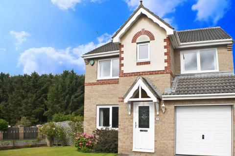 4 bedroom detached house for sale - Grey Lady Walk, Prudhoe, NE42