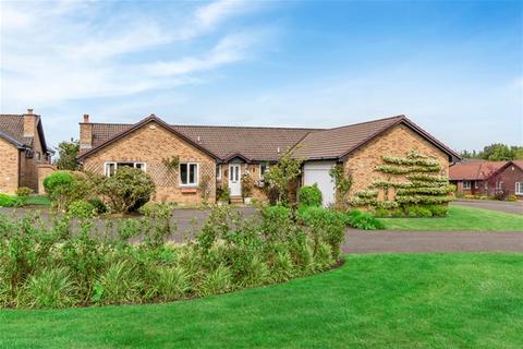 5 bedroom detached bungalow for sale - Murieston Walk, Livingston