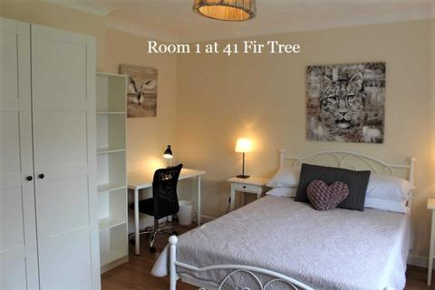1 bedroom house share to rent - Room 1,  41 Fir Tree Road, Guildford, GU1 1JN- ROOM FOR COUPLES!