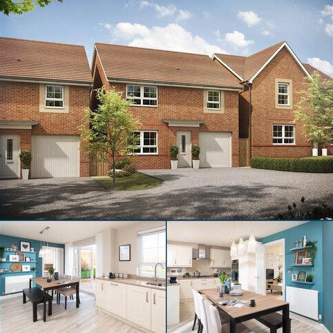 4 bedroom detached house for sale - Plot 108, Windermere at Chalkers Rise, Pelham Rise, Peacehaven, PEACEHAVEN BN10