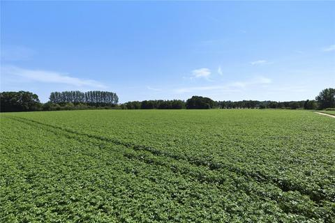 Farm for sale - Land At Postwick, Postwick, Norwich, NR13