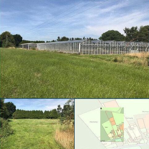 Farm to rent - Hill Lane, Barnham, West Sussex