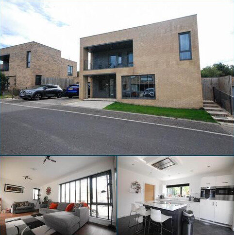 4 bedroom detached house for sale - Broadleaf Walk, Birtley
