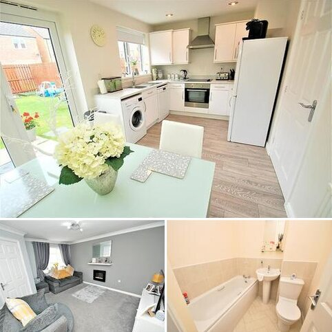 3 bedroom link detached house for sale - Bronte Way, South Shields