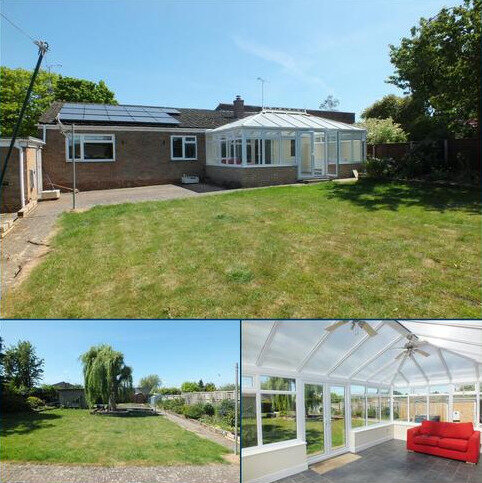 4 bedroom bungalow to rent - Raynsford Road, Great Whelnetham, Bury St Edmunds IP30