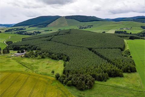 Land for sale - Risquehouse Forest, Huntly, Aberdeenshire