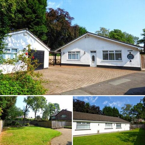 4 bedroom bungalow for sale - Spring Bank Lane, Bamford, Rochdale, Greater Manchester, OL11
