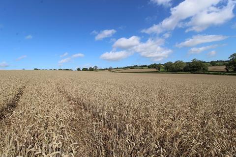 Land for sale - 20.47 Acres (8.282 Hectares) of arable land off Fole Lane, Hollington, Staffordshire