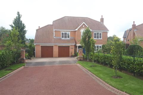 4 bedroom detached house for sale - Durham Garth, Manor Fields, Wynyard