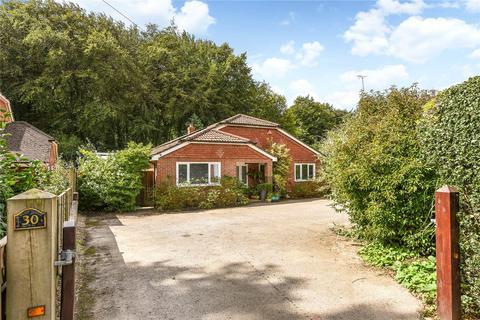 4 bedroom detached bungalow for sale - Telegraph Lane, Four Marks, Alton, Hampshire