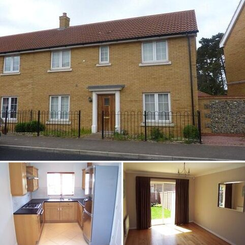 3 bedroom semi-detached house to rent - Thistle Way, Red Lodge, Bury St Edmunds, Suffolk, IP28