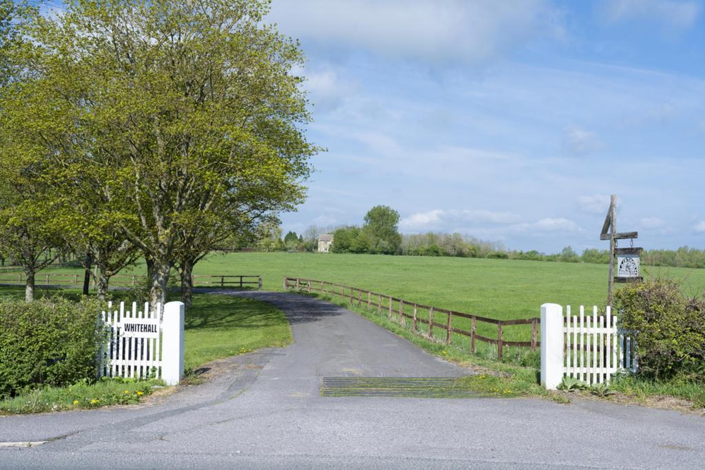 Whitehall Farm 061