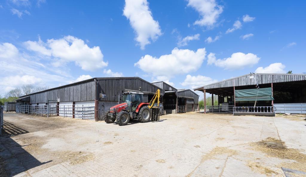Whitehall Farm 112