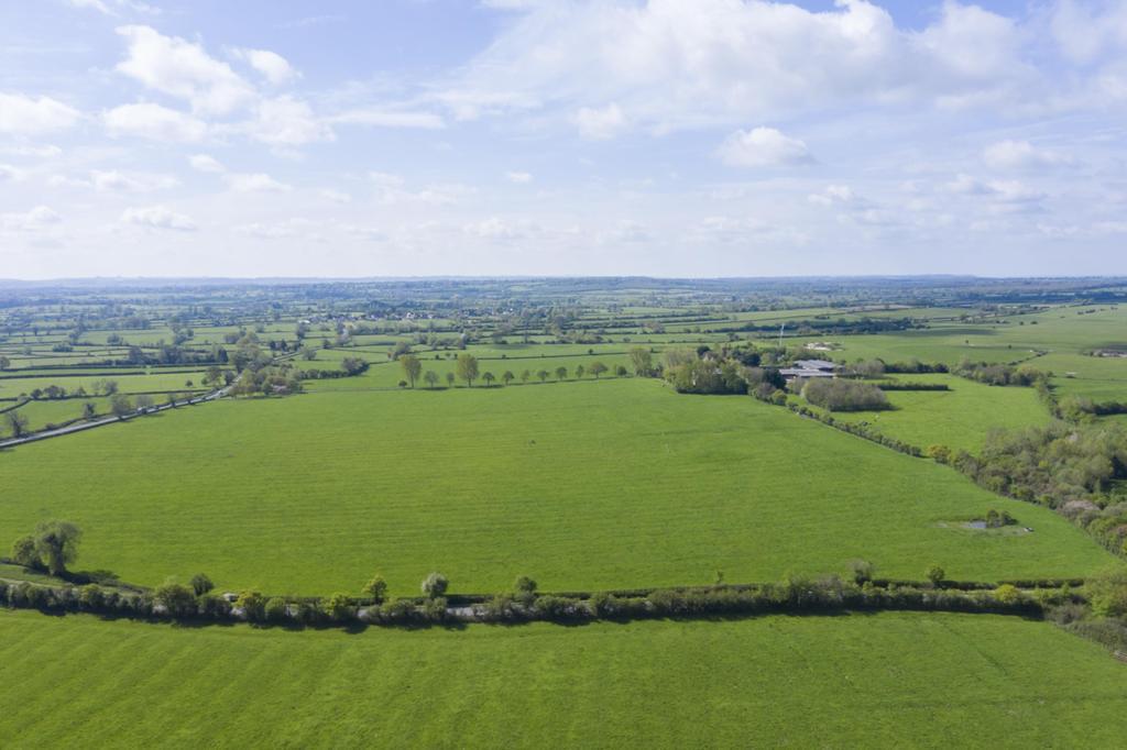 Whitehall Farm011