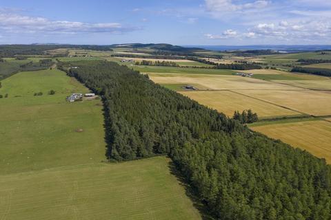 Land for sale - Lot 3 - Burnside Wood, Fortrose, Ross-Shire