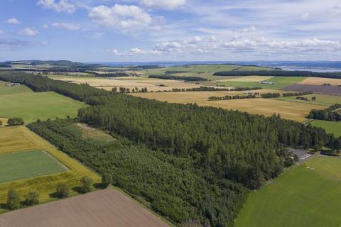Land for sale - Lot 4 - Burnside Wood, Fortrose, Ross-Shire