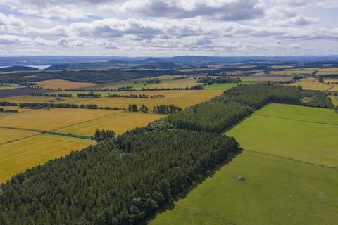 Land for sale - Lot 2 - Burnside Wood, Fortrose, Ross-Shire