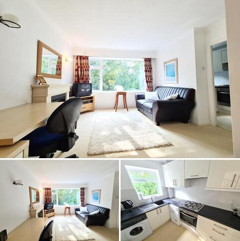 Studio to rent - Sheffield  S10