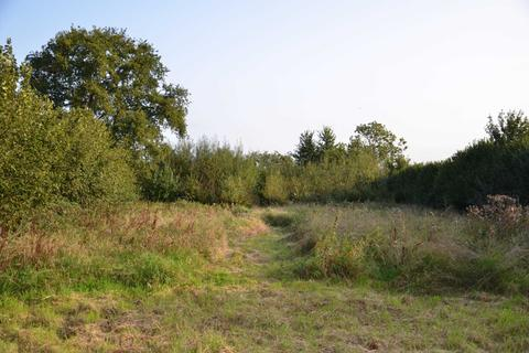 Land for sale - The Doctor`s Orchard