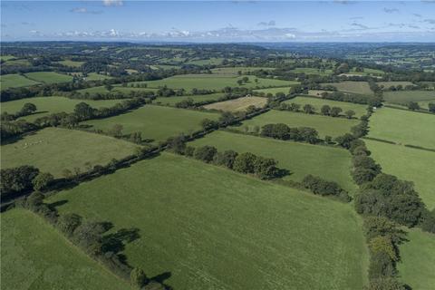 Land for sale - Lot 1 Land At Churchstanton, Taunton, Somerset, TA3
